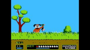duck-hunt-play